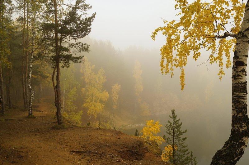 пейзаж,туман,октябрь,лес Утроphoto preview