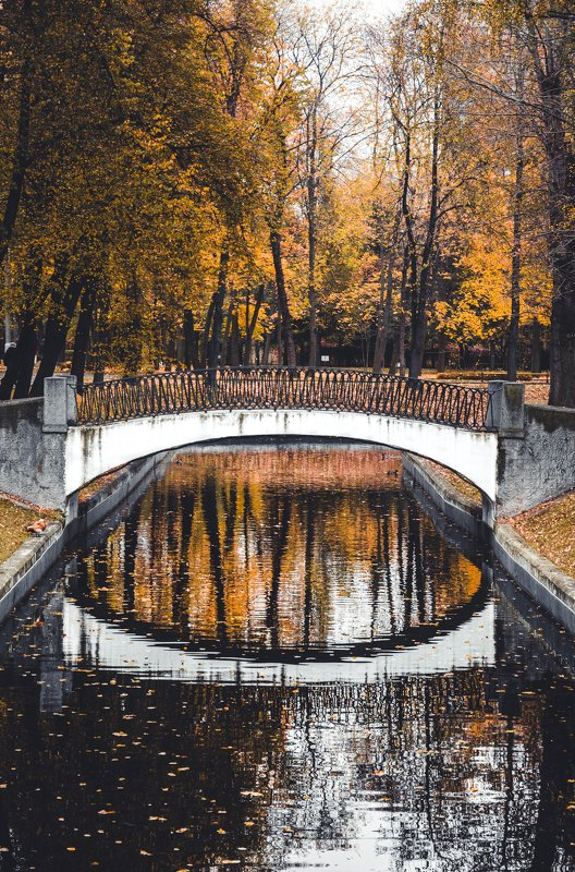 autumn, fall, yellow, refliction, architecture, park, nature, river, water, Moscow, Russia Отражение осениphoto preview