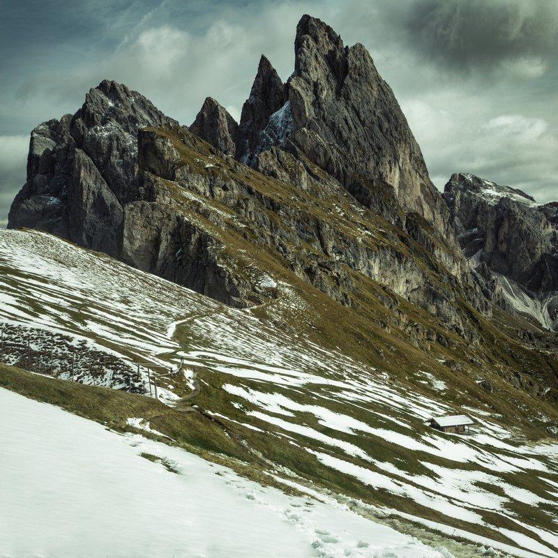 снег; горы; лес; альпы; италия Жизнь на склонеphoto preview