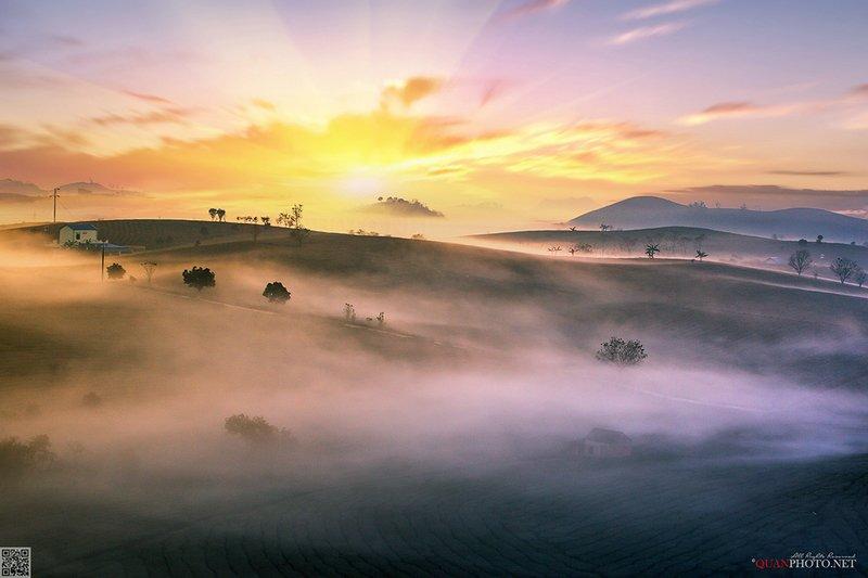 quanphoto, landscape, long_exposure, morning, dawn, valley, mountains, misty, foggy, tea, plantation, plateau, nature, vietnam Misty Morningphoto preview