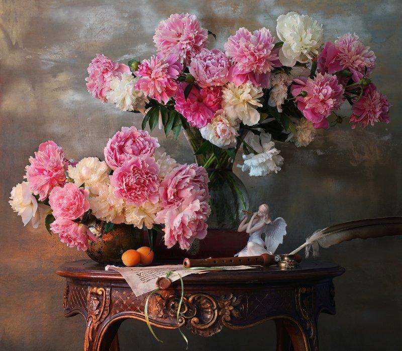 пионы, много пионов, цветы Натюрморт и много, много пионов :)photo preview