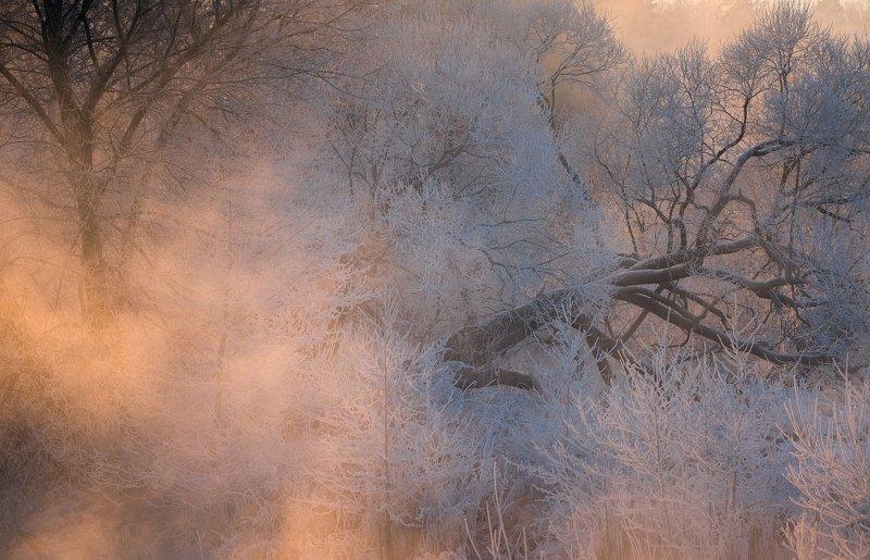 зима, рассвет, река, утро ,томилино В морозном туманеphoto preview