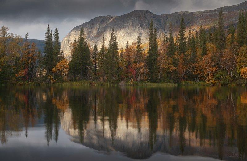 осень, ловозерские тундры, кольский полуостров, сентябрь, отражения, куйва, тайга, сейдозеро Осень в Ловозерских тундрахphoto preview