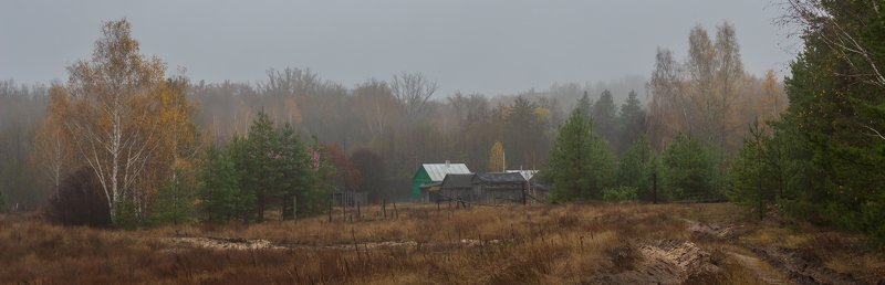 осень, деревня, туман, октябрь, лес photo preview