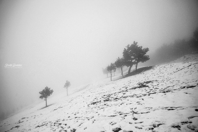 snow, winter, landscape, black and white, travel, ***photo preview