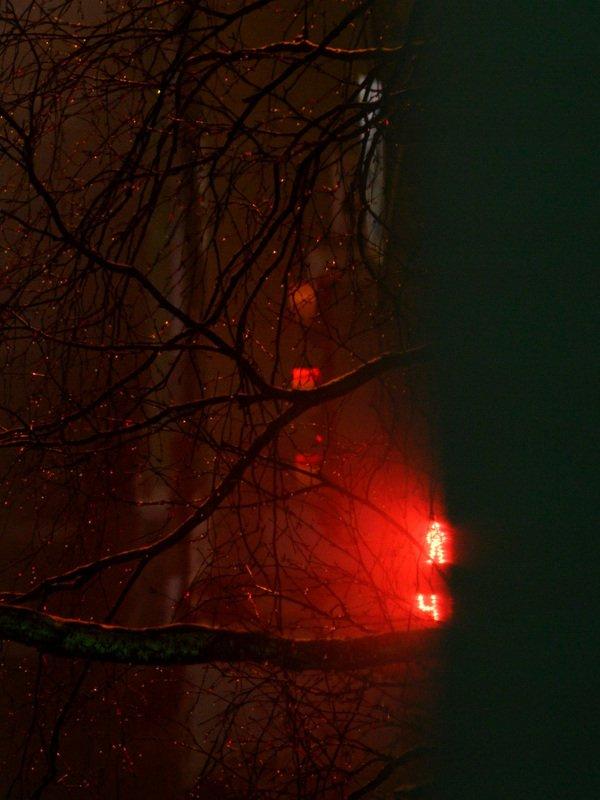 уличная фотография, северодвинск, осень, ночь, Каплиphoto preview