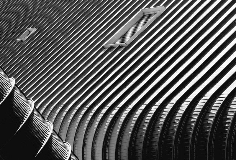 Claudio Sericano Portfoliophoto preview
