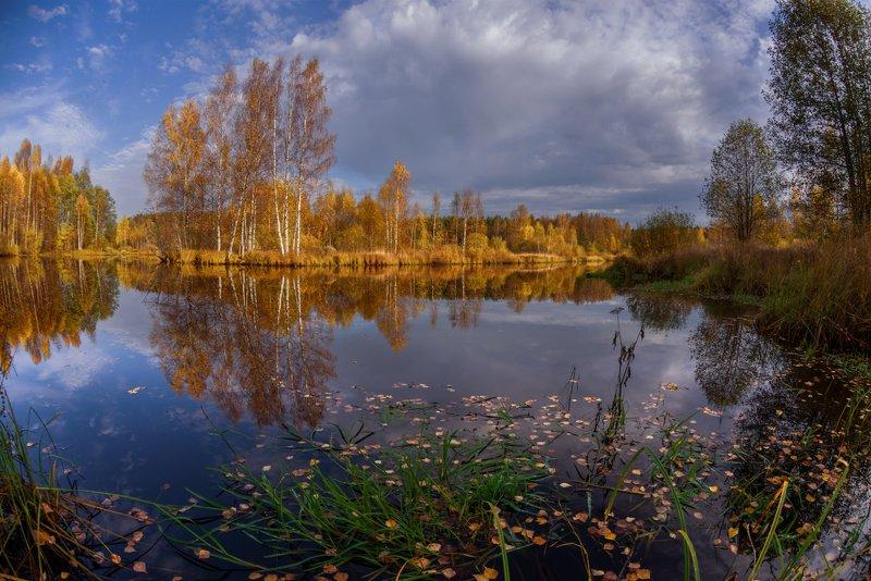 осень, река, листья, октябрь. день, утро про тихую осеньphoto preview