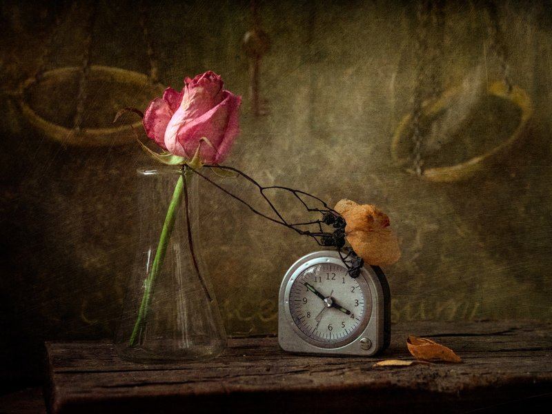 Время тает лепестками роз увядших...photo preview