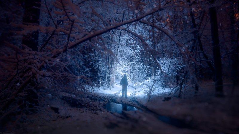 украина, коростышев, природа, лес, тишина, зима, снегопад, сияние, свет, уединение, жизнь, вдохновение, сказка, волшебство, фотограф, чорный В ночь белоснежную, тихо уйдешь...photo preview