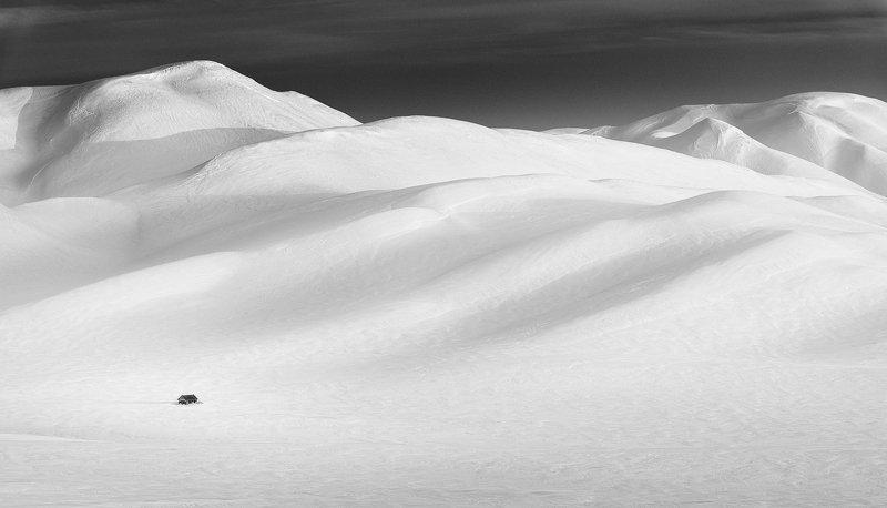 Среди гор белоснежныхphoto preview