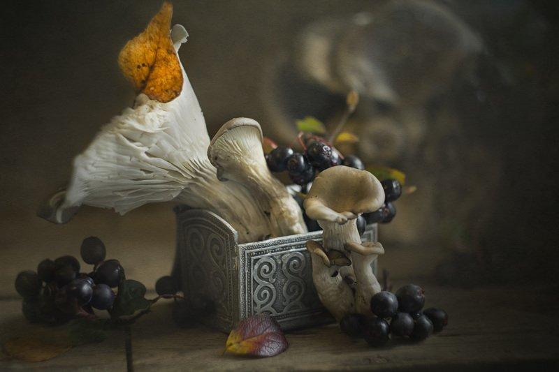 грибы, ягоды, осень Городские...photo preview