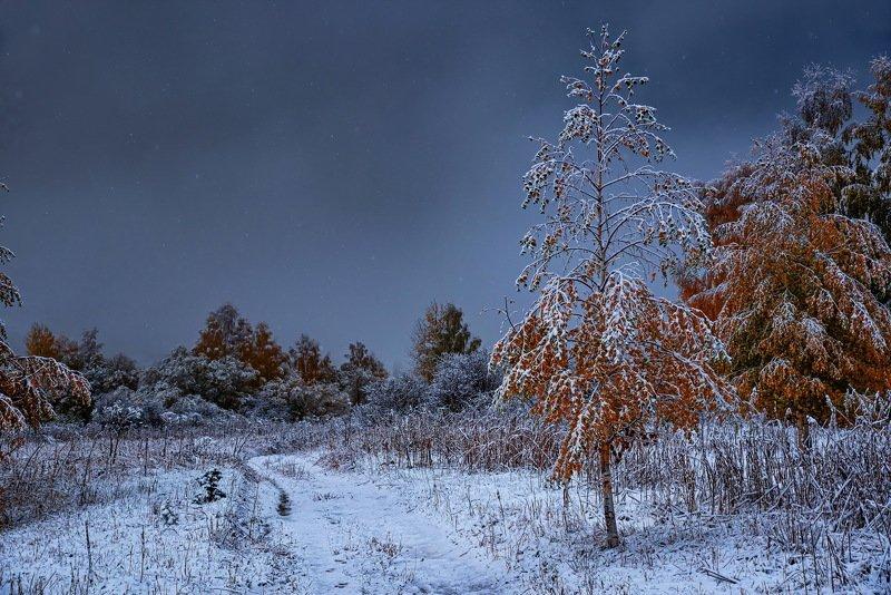 алтай. осень. горы. Первый снег Алтая.photo preview