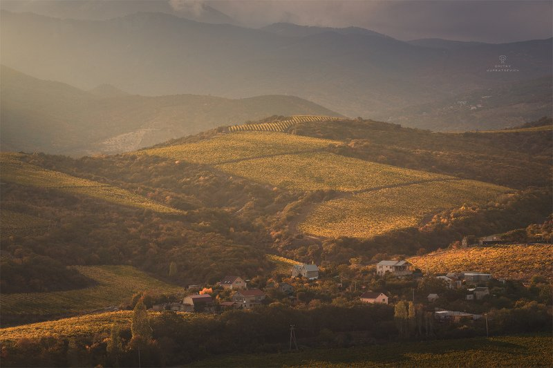 Виноградная долинаphoto preview