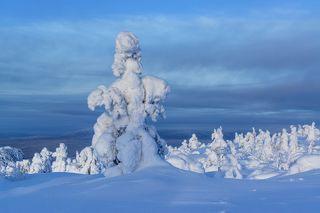 Зима в голубом...