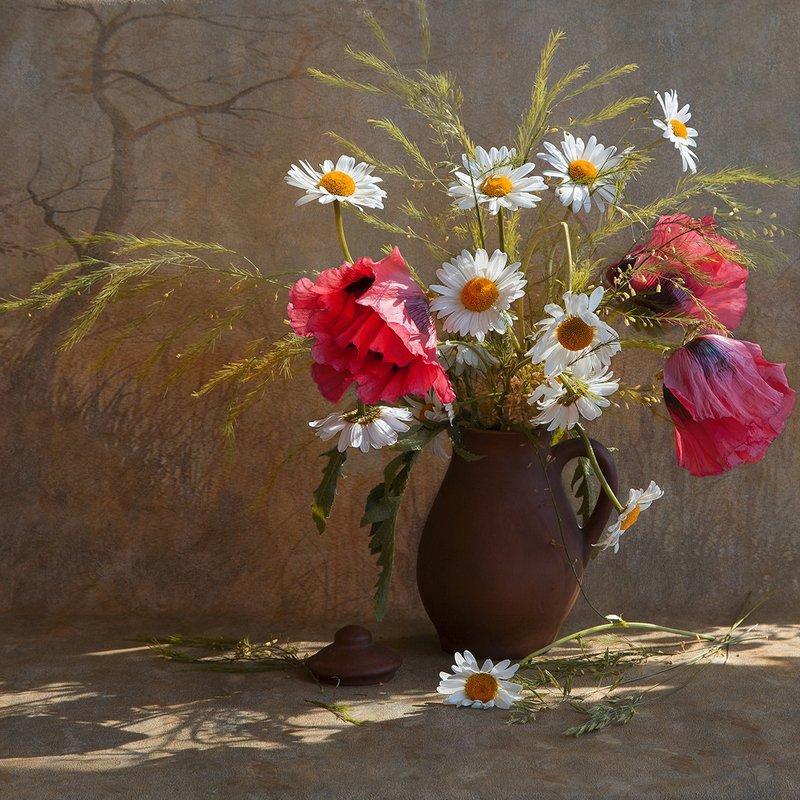 цветы, ромашки, маки Вспомним летоphoto preview