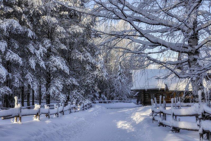 зима мороз иней деревья ветки снег сугробы дорога деревня дома изгородь Хитросплетения зимыphoto preview