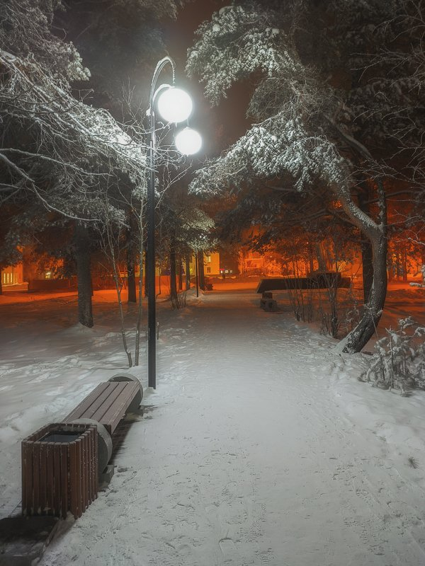 печора,коми,снег Вечерний паркphoto preview