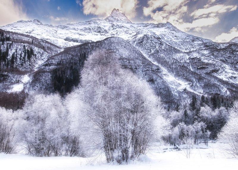 белалакая,домбай,кавказ Белалакаяphoto preview