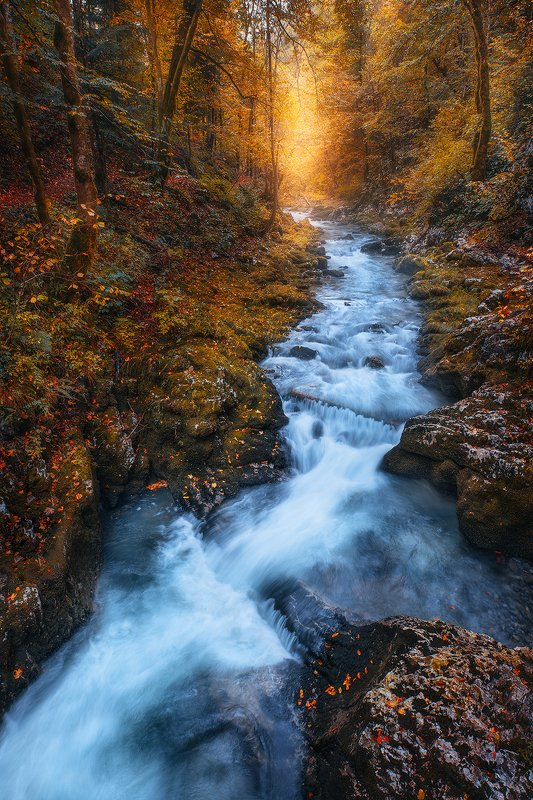 kkamacnik, croatia, autumn, river, foliage, fall, forest,  kamacnik фото превью