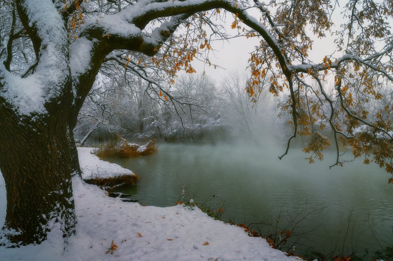 краснодар Всего одно зимнее утроphoto preview