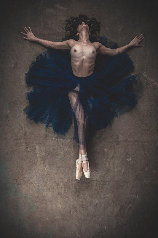 dancer, bailarina, cenital, zabrodski, body, S/Tphoto preview