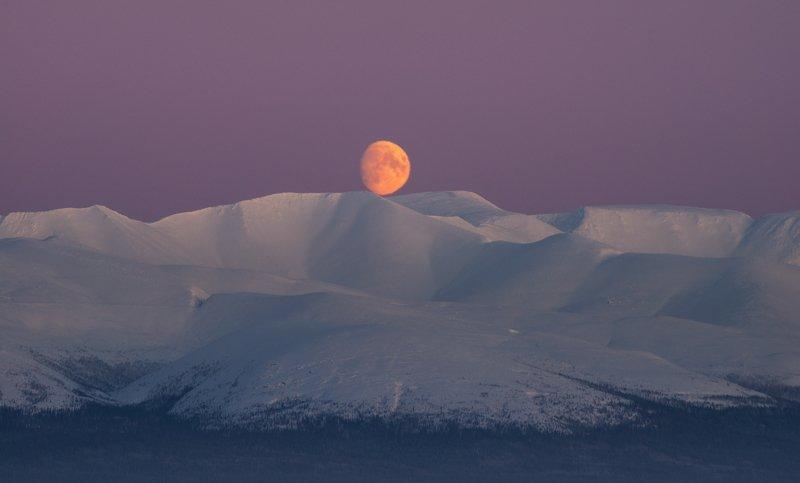 пейзаж,россия,мурманская область,хибины,север,зима,никон Ночное светилоphoto preview