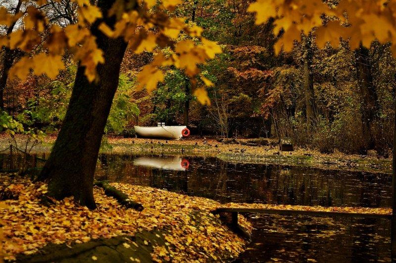 Лодка в осеньphoto preview