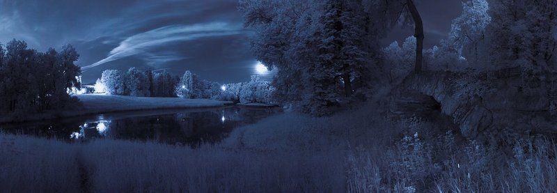 infrared, длинная выдержка, ночь, парк, полнолуние, инфракрасный,  инфракрасное ~77~photo preview