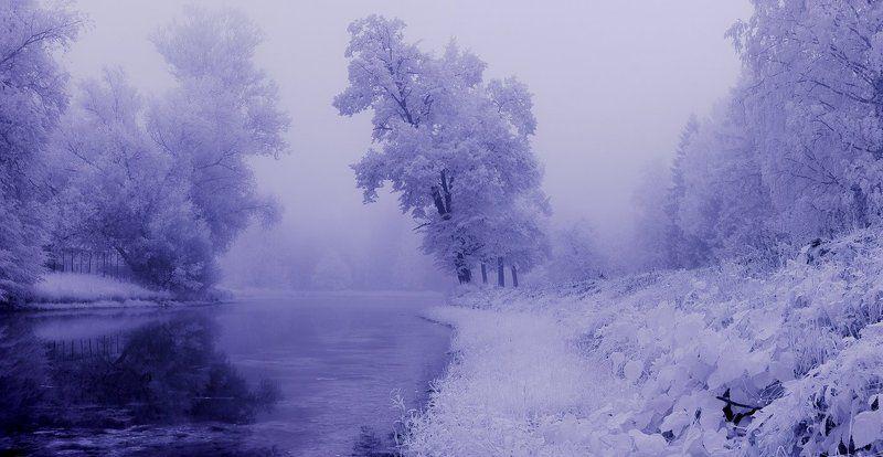 infrared, туман, парк, рассвет, лето, инфракрасный,  инфракрасное ~109~photo preview