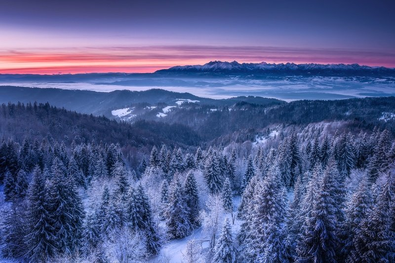 Frozen morning in the Mountainsphoto preview