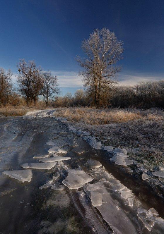 зима, утро, мороз, декабрь, лёд, иней По зимним дорожкам.photo preview