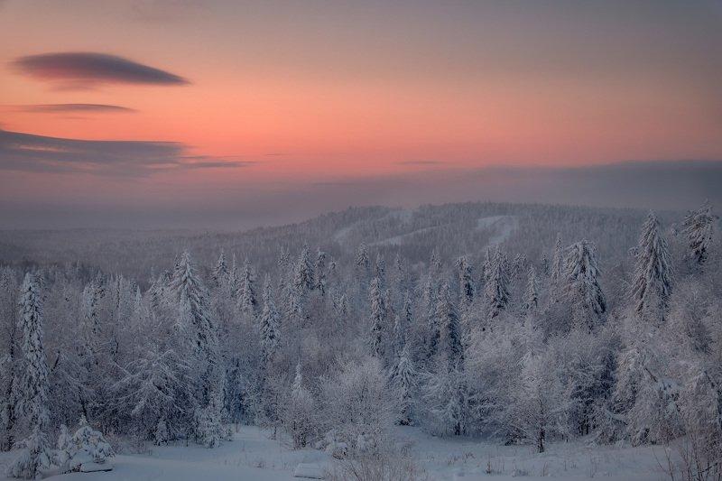 тайга, лес, деревья, зима, рождество, ночь, холод, мороз, белая, гора Царство Морозаphoto preview