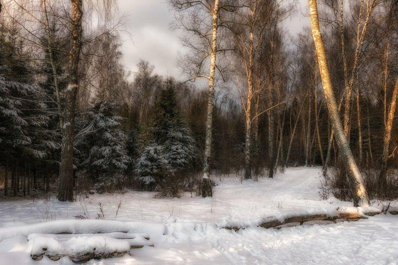 Подмосковная зимаphoto preview