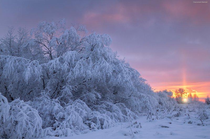 новый год, зима, мороз, закат, иней. С наступающим Новым годом всех!photo preview