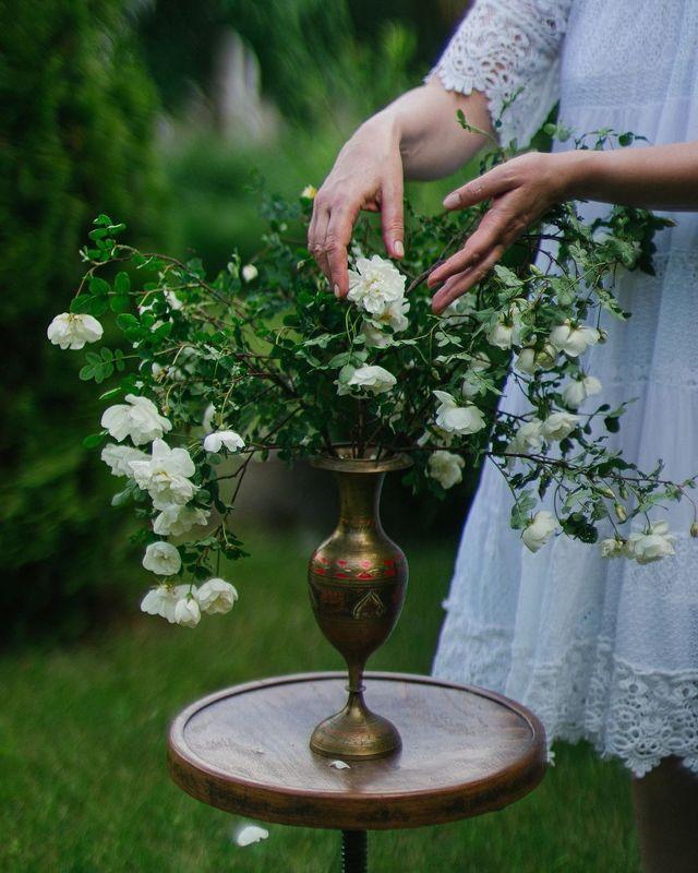 лето, цветы, букет, свет, боке photo preview