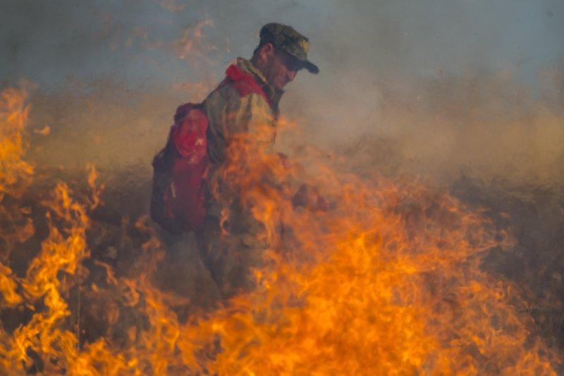 казахстан, юго-восток, река, или, река или, дельта, пожар, пожар в степи, мойынкум, Пожар в степи - 2photo preview