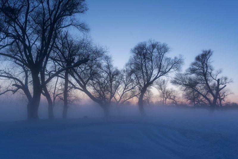 титовка, река нежеголь, вечер, туман, мороз, зима Морозный вечерphoto preview