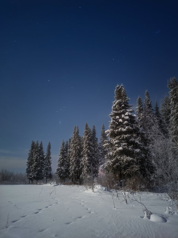 печора,ночь,звезды Ночь севераphoto preview