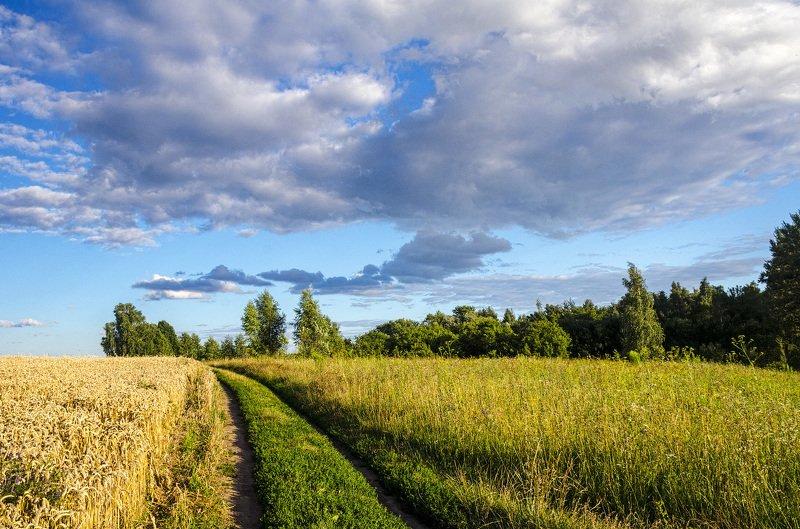 nevant60, пейзаж, красота, природа Полевые дорогиphoto preview