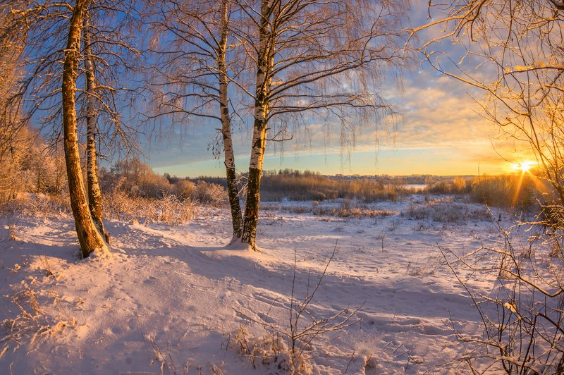 зима , вечер, снег, иней про зимний вечерокphoto preview