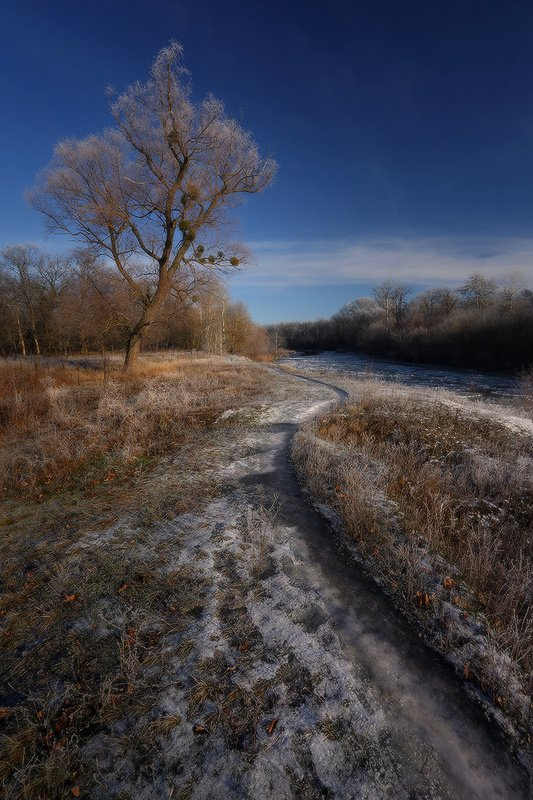 зима, декабрь, иней, мороз, пейзаж ***photo preview