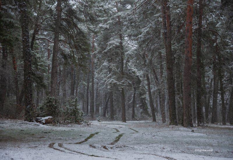 Зима.Январь....photo preview