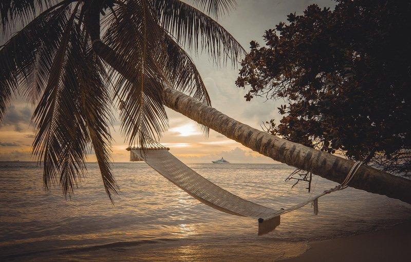 Maldivesphoto preview