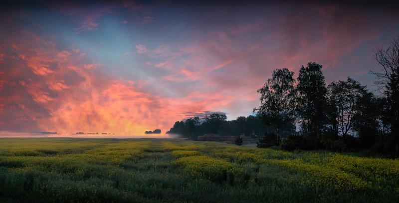 весна, рассвет, небо, поле, дымка, Рассветphoto preview