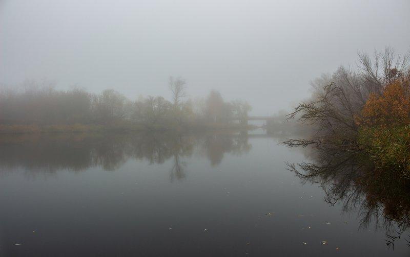 туман, река, природа, осень, озеро, ноябрь, лес, вода, усмань photo preview