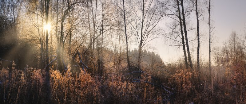 Тула, Ясная Поляна, Калинов луг Солнце зимнего дняphoto preview