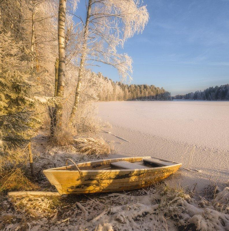 На берегу замерзшего прудаphoto preview