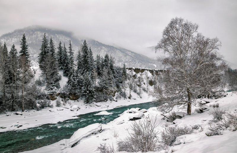 горный алтай,зима,непогода,снег,река чуя Ненастный день...photo preview