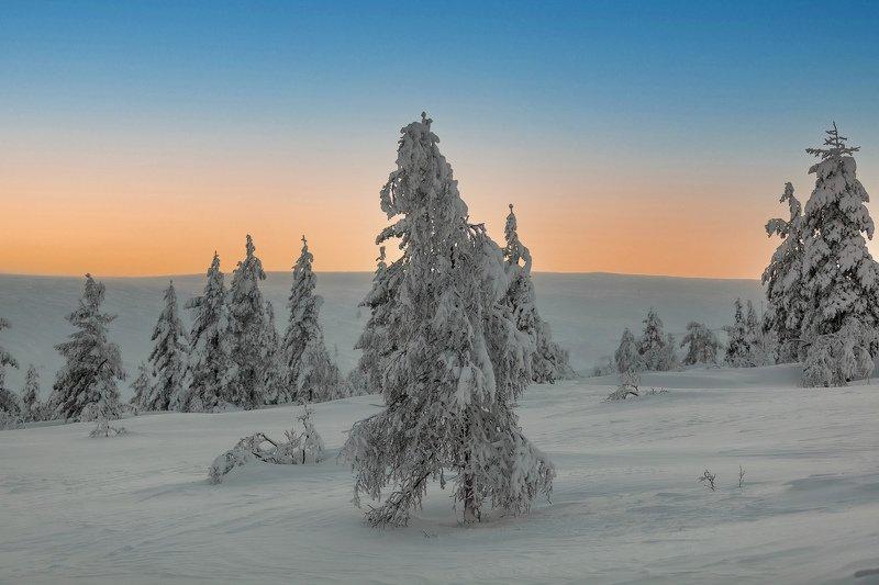 зима, день, пейзаж, снег, небо короткий заполярный деньphoto preview
